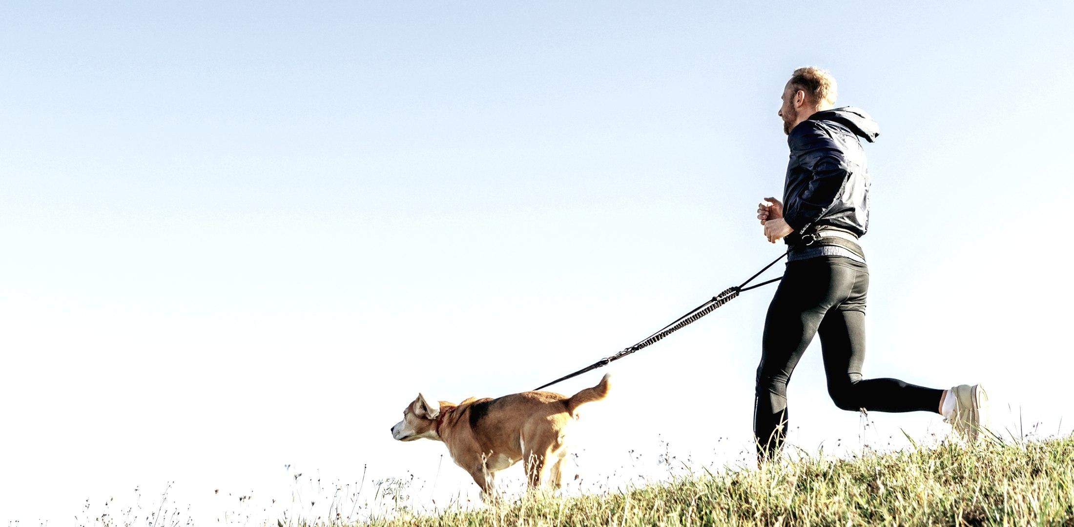 Joggen mit Hund, © Nordstrand Tourismus