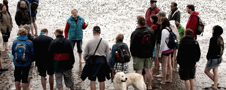 Wattwanderung Führung, © Nordstrand Tourismus