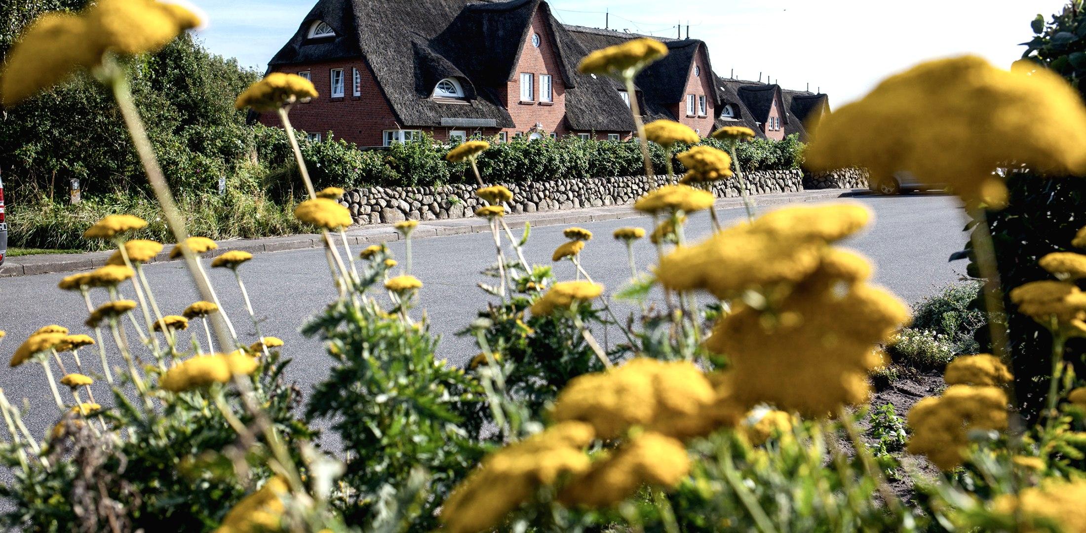 Unterkünfte nach Arten, © Nordstrand Tourismus