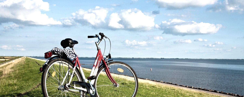 Fahrrad Deich, © Nordstrand Toursimus