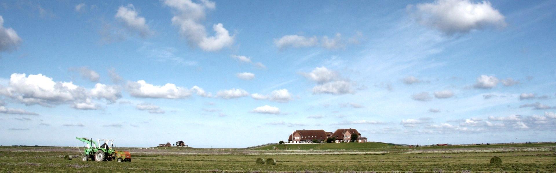 Bauernhof Nordstr.Moor, © Ruth Hartwig-Kruse