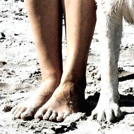 Hund und Halter, © Pitopia